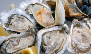 Oyster Extract and Testosterone