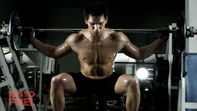 Squats and Testosterone Production