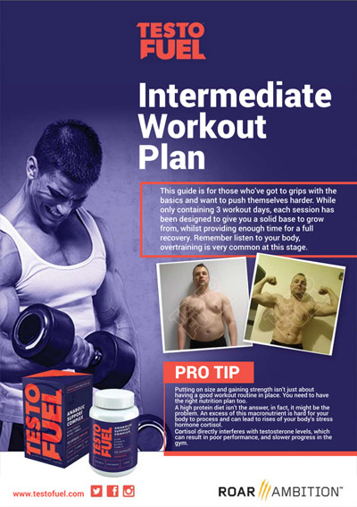 Intermediate Workout Plan