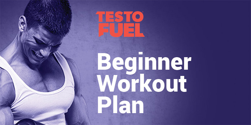 Beginner Muscle Building Workout Plan