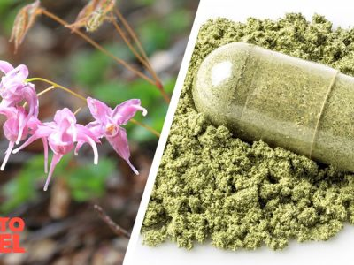 Does Horny Goat Weed Increase Testosterone?