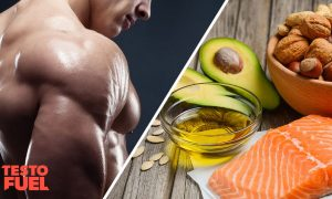 The Relationship Between High Fat Diet & Testosterone Levels