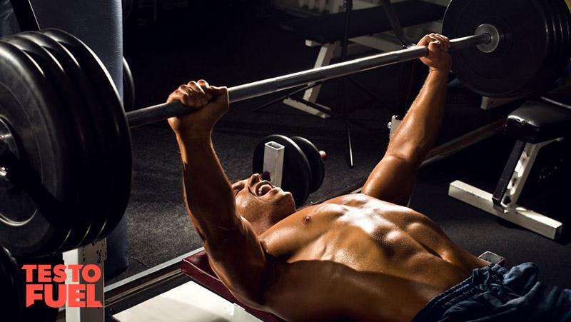 Increasing Testosterone through Bench Press