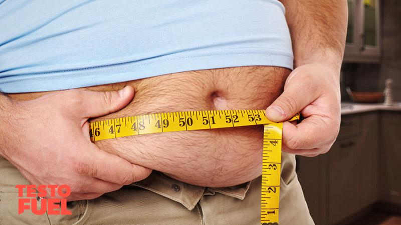 Obesity-Lowers-Testosterone
