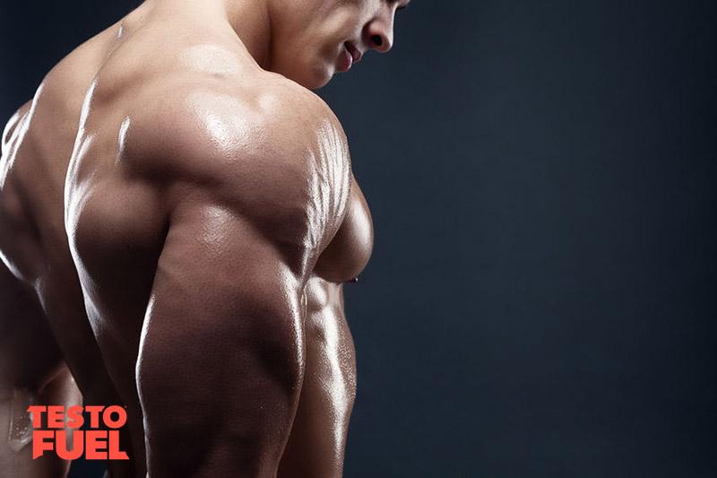 does soy lower testosterone myth