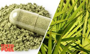 Is Saw Palmetto Safe?: The Side Effects