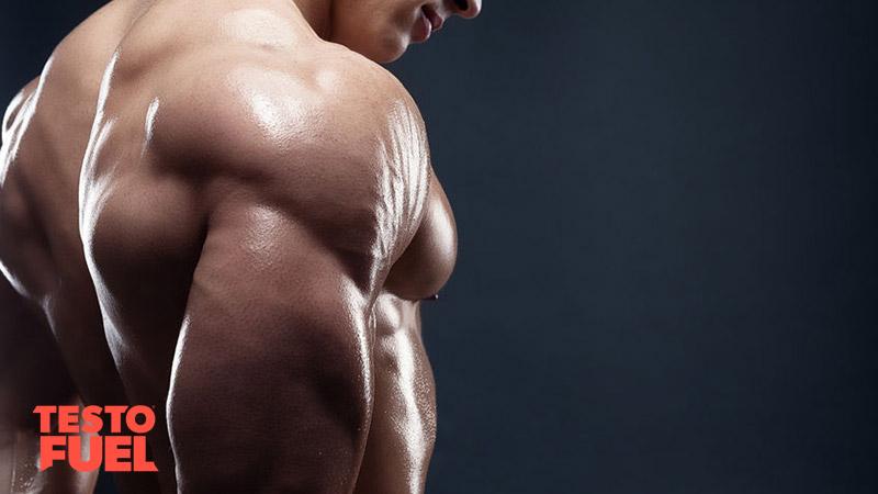 Testosterone-Boosting-Polyphenols