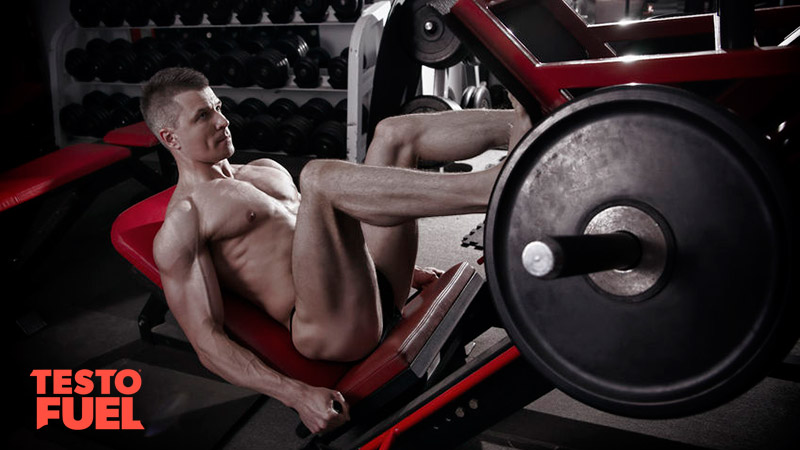 leg-training-for-muscle