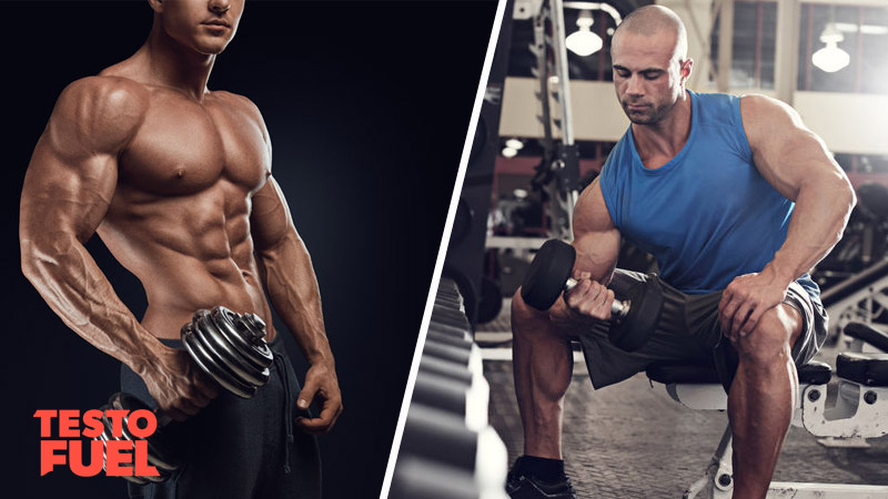 Fool Proof Mass Building Guide The Workout Plan