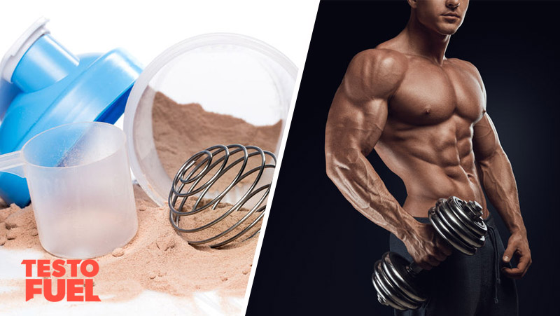 Do You Really Need Protein Shakes?