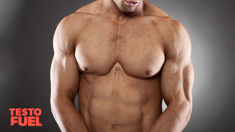 supplements-for-muscle-mass