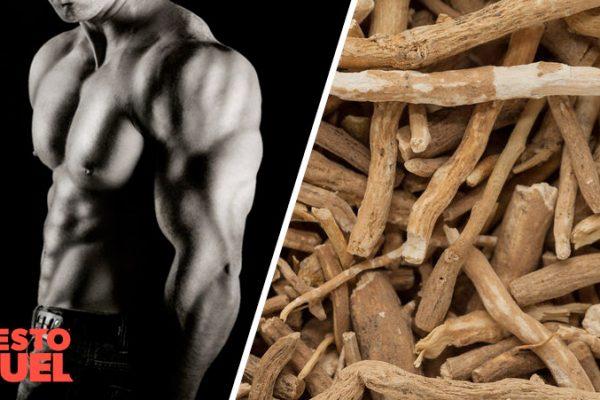 Can Ashwagandha Boost Testosterone?