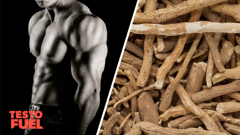 Can Ashwagandha Boost Testosterone?