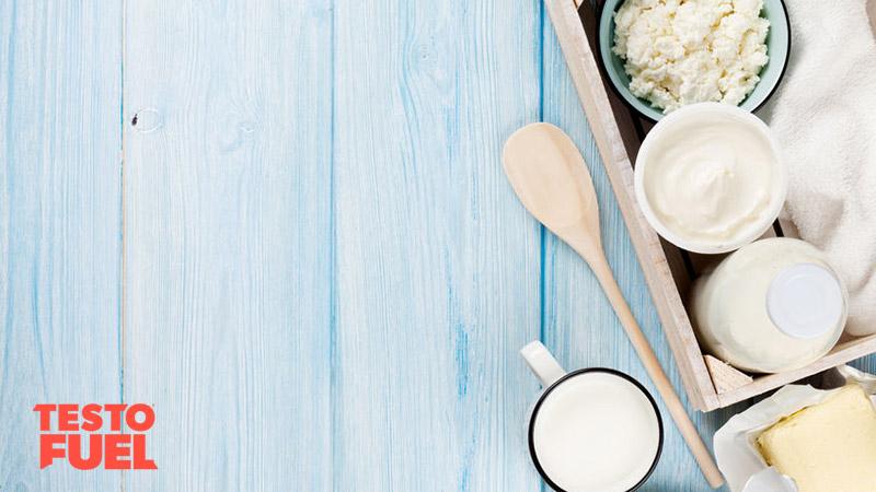 lactic-acid-and-probiotics