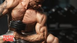 A Complete Guide to Upper Arm Training