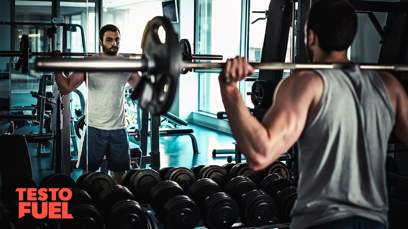 Build Muscle with German Volume Training - TestoFuel Blog
