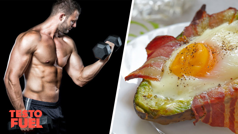 ketogenic diet increases testosterone
