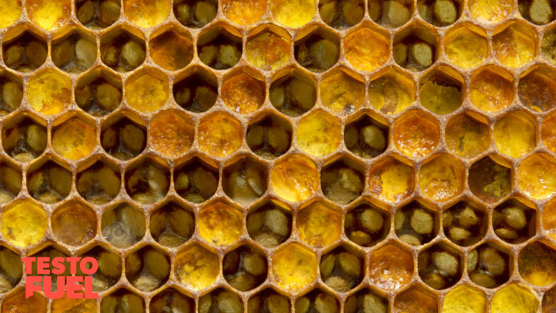 honeycomb-royal-jelly