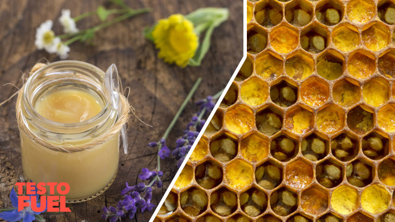 Does Royal Jelly Affect Testosterone?