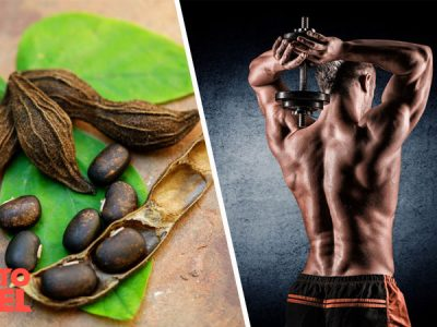 Does Mucuna Pruriens Boost Testosterone?