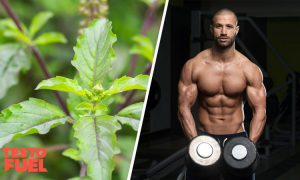 Can Holy Basil Boost Testosterone?