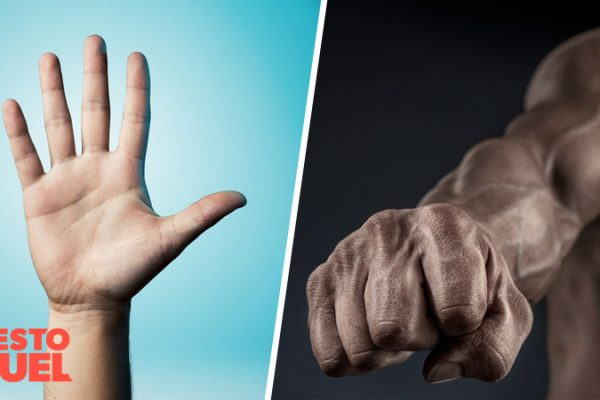 Digit Ratio: Finger Length and Testosterone