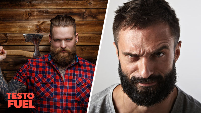 Does Testosterone Affect Beard Growth Testofuel Blog