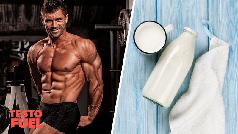 How Does Milk Affect Your Testosterone Levels?