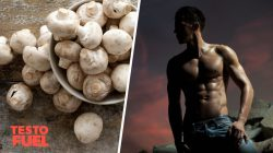 Do Mushrooms Affect Testosterone Levels?