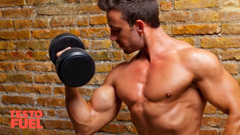 A bodybuilder bicep curling a dumbbell in front of a brick wall