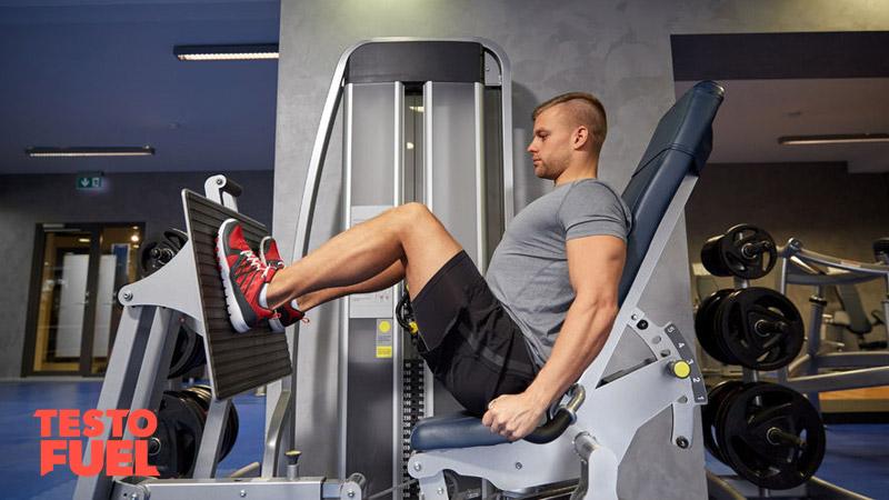Are Squats or Leg Presses Better for Testosterone? - TestoFuel Blog