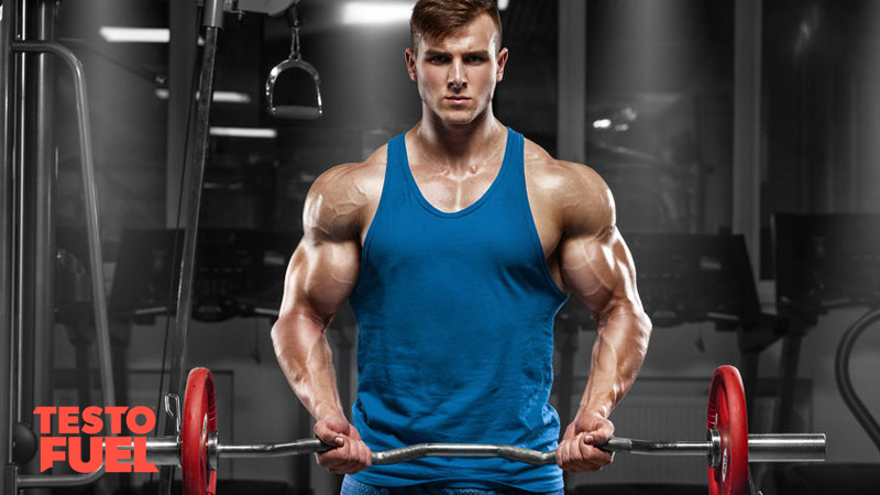 Strong and muscular man with athletic performance bicep curl to boost T levels