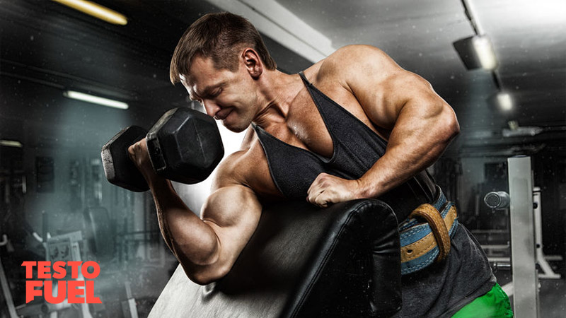 Bodybuilder doing bicep curls on a preacher bench with a heavy dumbbell