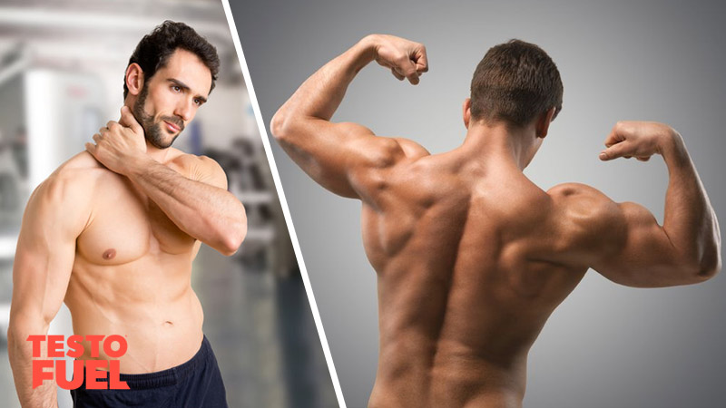 Relationship Between Testosterone and Muscle Aches