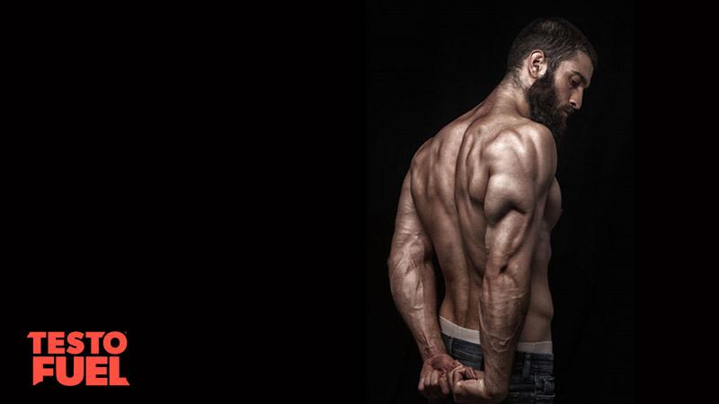 Shirtless, muscular man striking a triceps pose on black background