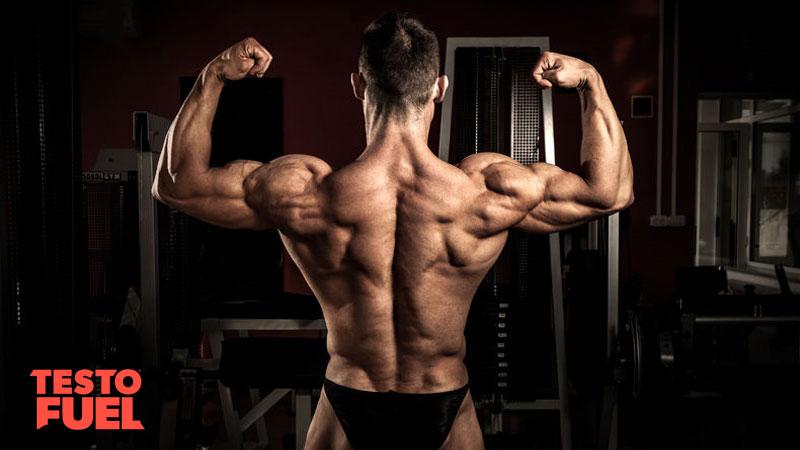 Bodybuilder double bicep pose on dark background
