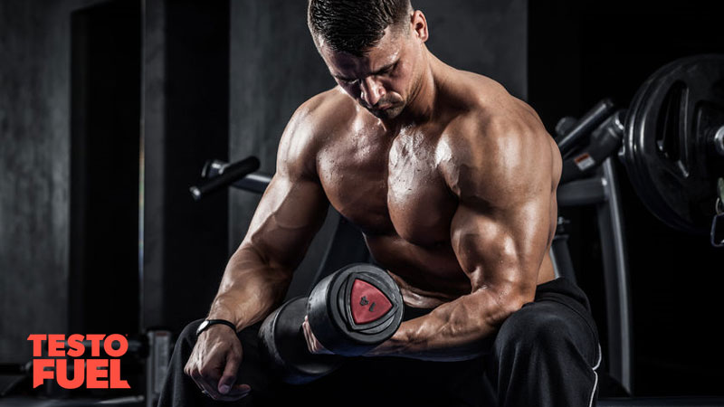 Muscle-athlete-arm-curl-mechanical-tension