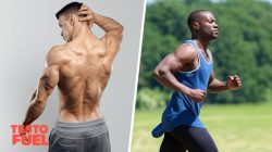 Normal Estrogen Levels for Males: Optimizing Hormonal Health