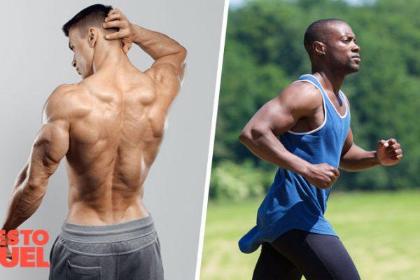 Normal Estrogen Levels for Males: Optimizing Hormonal Health
